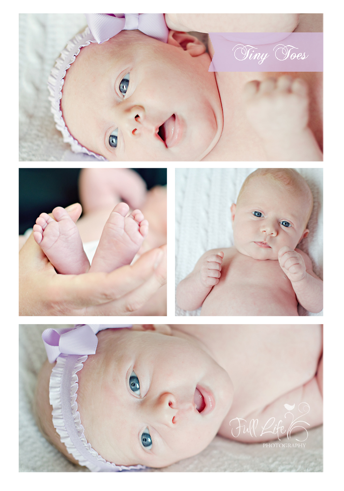 Chattanooga Newborn Photography
